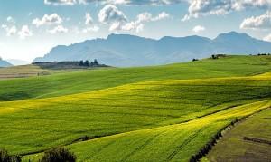 земеделски имот